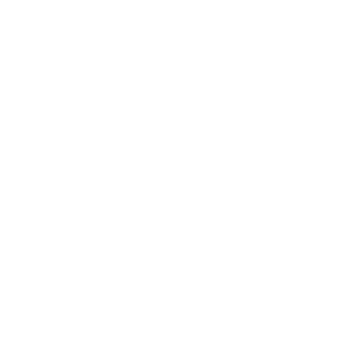 icon technology